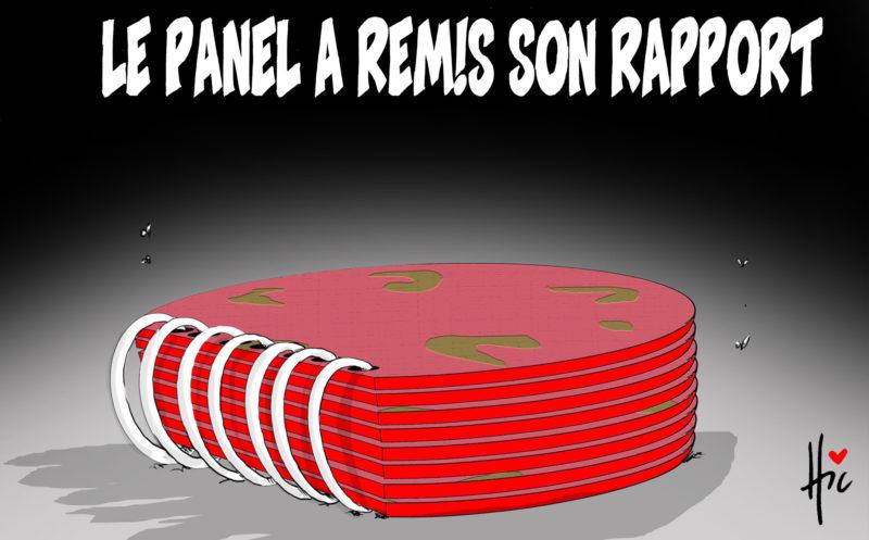 Le panel a remis son rapport - Dessins et Caricatures, Le Hic - El Watan - Gagdz.com