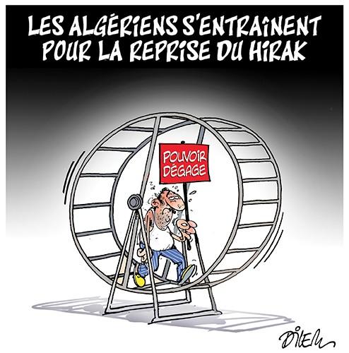 Les algériens s'entraînentpour la reprise du Hirak - déconfinement - Gagdz.com