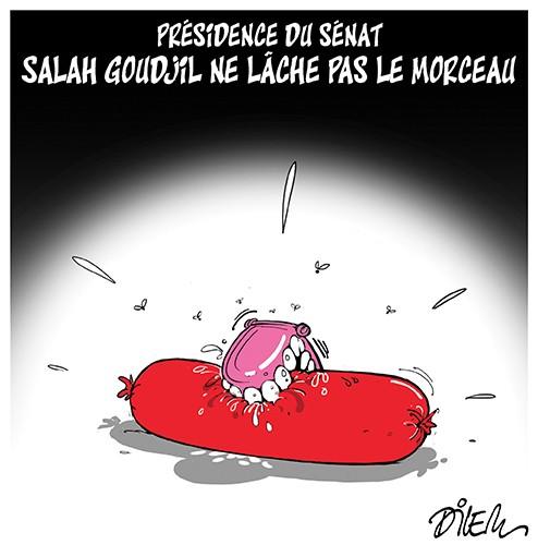 Présidence du sénat Salah Goudjil ne lâche pas le morceau - Cachir - Gagdz.com