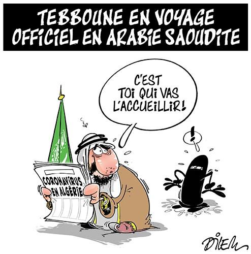 Tebboune en voyage officiel en Arabie Saoudite - Arabie Saoudite - Gagdz.com