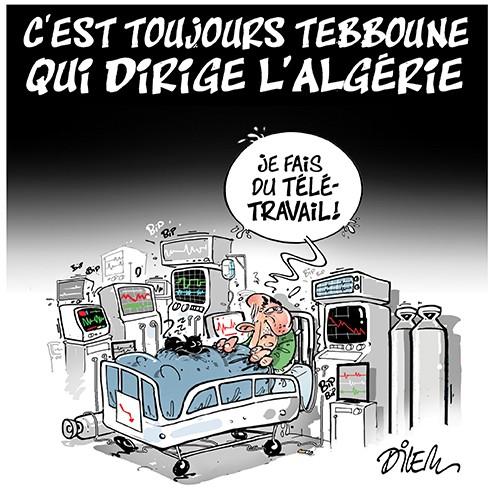 C'est toujours Tebboune qui dirige l'Algérie - Tebboune - Gagdz.com